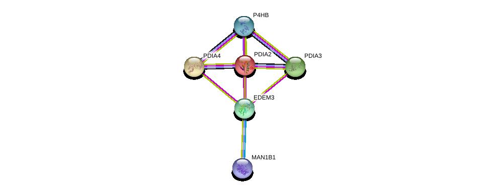 http://string-db.org/version_10/api/image/networkList?limit=0&targetmode=proteins&caller_identity=gene_cards&network_flavor=evidence&identifiers=9606.ENSP00000318147%0d%0a9606.ENSP00000360645%0d%0a9606.ENSP00000286091%0d%0a9606.ENSP00000300289%0d%0a9606.ENSP00000327801%0d%0a9606.ENSP00000219406%0d%0a