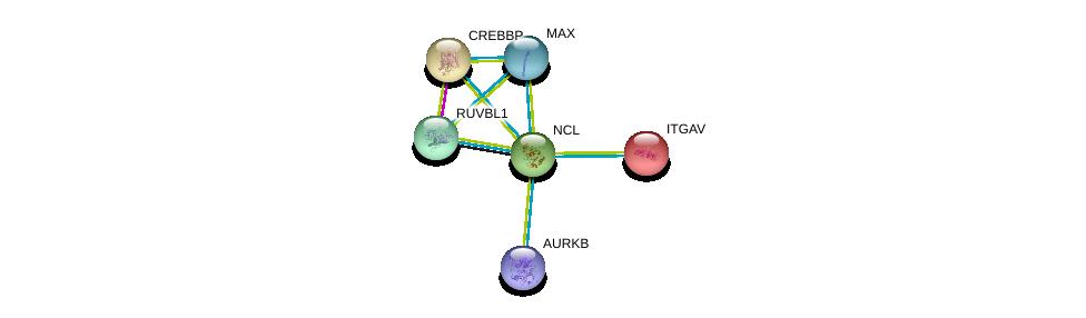 http://string-db.org/version_10/api/image/networkList?limit=0&targetmode=proteins&caller_identity=gene_cards&network_flavor=evidence&identifiers=9606.ENSP00000318195%0d%0a9606.ENSP00000261023%0d%0a9606.ENSP00000463999%0d%0a9606.ENSP00000318297%0d%0a9606.ENSP00000351490%0d%0a9606.ENSP00000262367%0d%0a