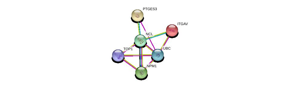 http://string-db.org/version_10/api/image/networkList?limit=0&targetmode=proteins&caller_identity=gene_cards&network_flavor=evidence&identifiers=9606.ENSP00000318195%0d%0a9606.ENSP00000296930%0d%0a9606.ENSP00000344818%0d%0a9606.ENSP00000354522%0d%0a9606.ENSP00000261023%0d%0a9606.ENSP00000262033%0d%0a
