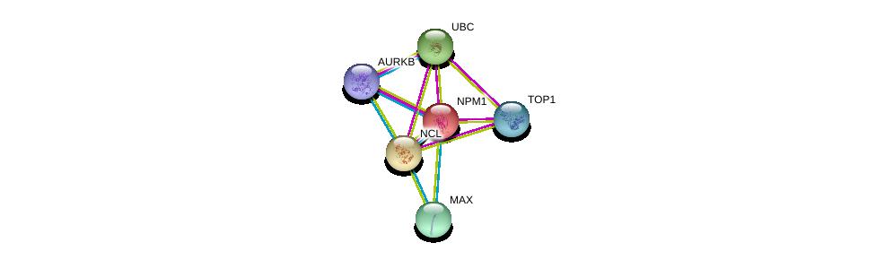 http://string-db.org/version_10/api/image/networkList?limit=0&targetmode=proteins&caller_identity=gene_cards&network_flavor=evidence&identifiers=9606.ENSP00000318195%0d%0a9606.ENSP00000296930%0d%0a9606.ENSP00000344818%0d%0a9606.ENSP00000354522%0d%0a9606.ENSP00000463999%0d%0a9606.ENSP00000351490%0d%0a