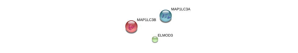 http://string-db.org/version_10/api/image/networkList?limit=0&targetmode=proteins&caller_identity=gene_cards&network_flavor=evidence&identifiers=9606.ENSP00000318264%0d%0a9606.ENSP00000268607%0d%0a9606.ENSP00000363970%0d%0a