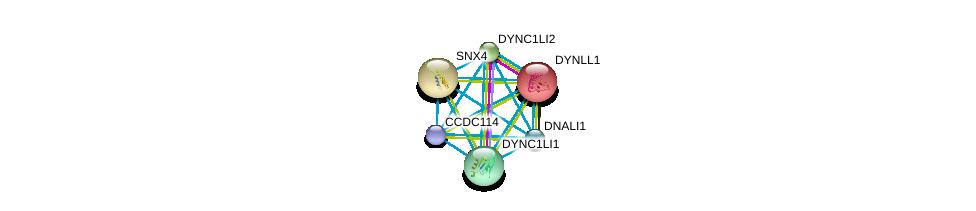 http://string-db.org/version_10/api/image/networkList?limit=0&targetmode=proteins&caller_identity=gene_cards&network_flavor=evidence&identifiers=9606.ENSP00000318429%0d%0a9606.ENSP00000242577%0d%0a9606.ENSP00000251775%0d%0a9606.ENSP00000258198%0d%0a9606.ENSP00000273130%0d%0a9606.ENSP00000296218%0d%0a