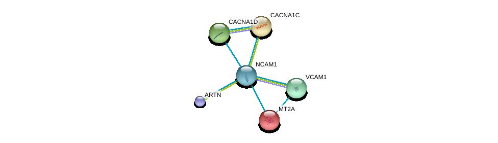 http://string-db.org/version_10/api/image/networkList?limit=0&targetmode=proteins&caller_identity=gene_cards&network_flavor=evidence&identifiers=9606.ENSP00000318472%0d%0a9606.ENSP00000387435%0d%0a9606.ENSP00000245185%0d%0a9606.ENSP00000266376%0d%0a9606.ENSP00000288139%0d%0a9606.ENSP00000294728%0d%0a