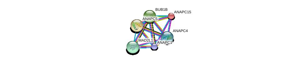 http://string-db.org/version_10/api/image/networkList?limit=0&targetmode=proteins&caller_identity=gene_cards&network_flavor=evidence&identifiers=9606.ENSP00000318775%0d%0a9606.ENSP00000339109%0d%0a9606.ENSP00000227618%0d%0a9606.ENSP00000261819%0d%0a9606.ENSP00000287598%0d%0a9606.ENSP00000296509%0d%0a
