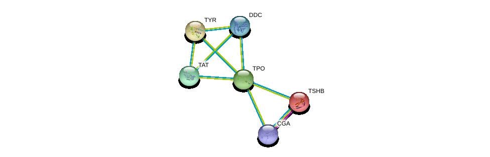 http://string-db.org/version_10/api/image/networkList?limit=0&targetmode=proteins&caller_identity=gene_cards&network_flavor=evidence&identifiers=9606.ENSP00000318820%0d%0a9606.ENSP00000350616%0d%0a9606.ENSP00000348234%0d%0a9606.ENSP00000358595%0d%0a9606.ENSP00000263321%0d%0a9606.ENSP00000256592%0d%0a
