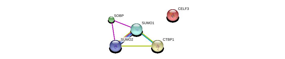 http://string-db.org/version_10/api/image/networkList?limit=0&targetmode=proteins&caller_identity=gene_cards&network_flavor=evidence&identifiers=9606.ENSP00000318900%0d%0a9606.ENSP00000405965%0d%0a9606.ENSP00000376076%0d%0a9606.ENSP00000290583%0d%0a9606.ENSP00000290921%0d%0a