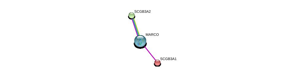 http://string-db.org/version_10/api/image/networkList?limit=0&targetmode=proteins&caller_identity=gene_cards&network_flavor=evidence&identifiers=9606.ENSP00000318916%0d%0a9606.ENSP00000296694%0d%0a9606.ENSP00000292641%0d%0a