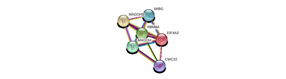 http://string-db.org/version_10/api/image/networkList?limit=0&targetmode=proteins&caller_identity=gene_cards&network_flavor=evidence&identifiers=9606.ENSP00000319240%0d%0a9606.ENSP00000333001%0d%0a9606.ENSP00000269349%0d%0a9606.ENSP00000386156%0d%0a9606.ENSP00000360525%0d%0a9606.ENSP00000387006%0d%0a