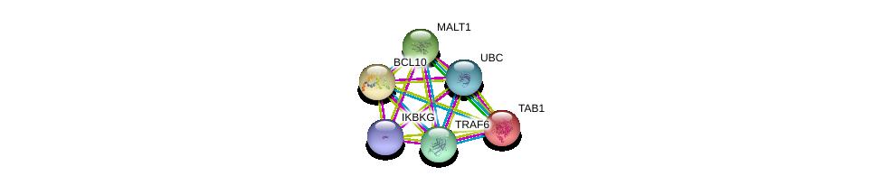 http://string-db.org/version_10/api/image/networkList?limit=0&targetmode=proteins&caller_identity=gene_cards&network_flavor=evidence&identifiers=9606.ENSP00000319279%0d%0a9606.ENSP00000344818%0d%0a9606.ENSP00000271015%0d%0a9606.ENSP00000337853%0d%0a9606.ENSP00000358622%0d%0a9606.ENSP00000216160%0d%0a