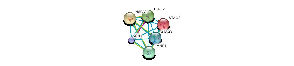 http://string-db.org/version_10/api/image/networkList?limit=0&targetmode=proteins&caller_identity=gene_cards&network_flavor=evidence&identifiers=9606.ENSP00000319318%0d%0a9606.ENSP00000377496%0d%0a9606.ENSP00000218089%0d%0a9606.ENSP00000247207%0d%0a9606.ENSP00000254942%0d%0a9606.ENSP00000261366%0d%0a