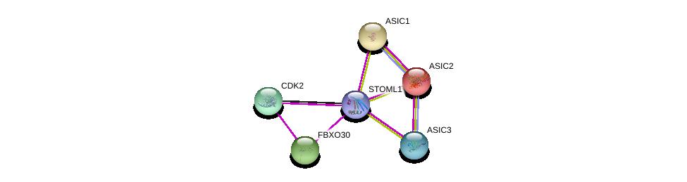 http://string-db.org/version_10/api/image/networkList?limit=0&targetmode=proteins&caller_identity=gene_cards&network_flavor=evidence&identifiers=9606.ENSP00000319323%0d%0a9606.ENSP00000225823%0d%0a9606.ENSP00000228468%0d%0a9606.ENSP00000297512%0d%0a9606.ENSP00000237281%0d%0a9606.ENSP00000266970%0d%0a