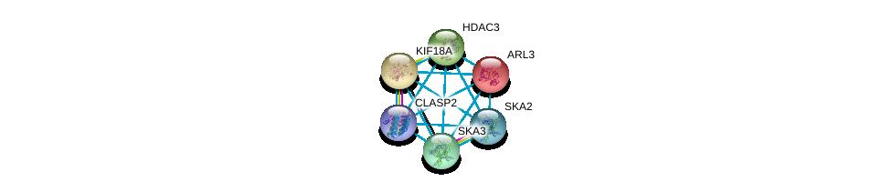 http://string-db.org/version_10/api/image/networkList?limit=0&targetmode=proteins&caller_identity=gene_cards&network_flavor=evidence&identifiers=9606.ENSP00000319417%0d%0a9606.ENSP00000333433%0d%0a9606.ENSP00000302967%0d%0a9606.ENSP00000419974%0d%0a9606.ENSP00000260746%0d%0a9606.ENSP00000263181%0d%0a