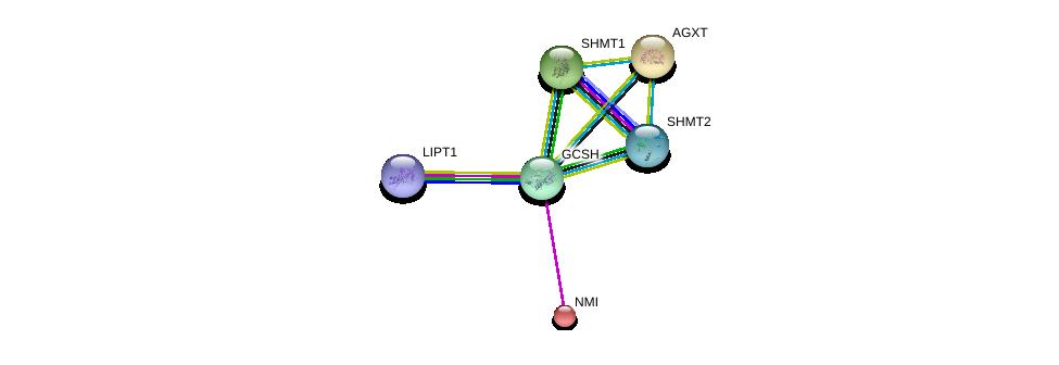 http://string-db.org/version_10/api/image/networkList?limit=0&targetmode=proteins&caller_identity=gene_cards&network_flavor=evidence&identifiers=9606.ENSP00000319531%0d%0a9606.ENSP00000333667%0d%0a9606.ENSP00000318868%0d%0a9606.ENSP00000302620%0d%0a9606.ENSP00000342071%0d%0a9606.ENSP00000243346%0d%0a