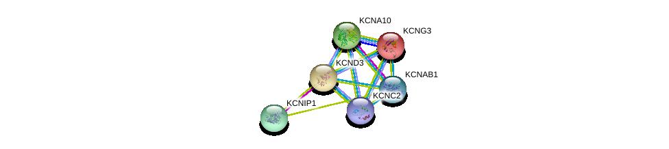 http://string-db.org/version_10/api/image/networkList?limit=0&targetmode=proteins&caller_identity=gene_cards&network_flavor=evidence&identifiers=9606.ENSP00000319591%0d%0a9606.ENSP00000395323%0d%0a9606.ENSP00000304127%0d%0a9606.ENSP00000358786%0d%0a9606.ENSP00000449253%0d%0a9606.ENSP00000419952%0d%0a