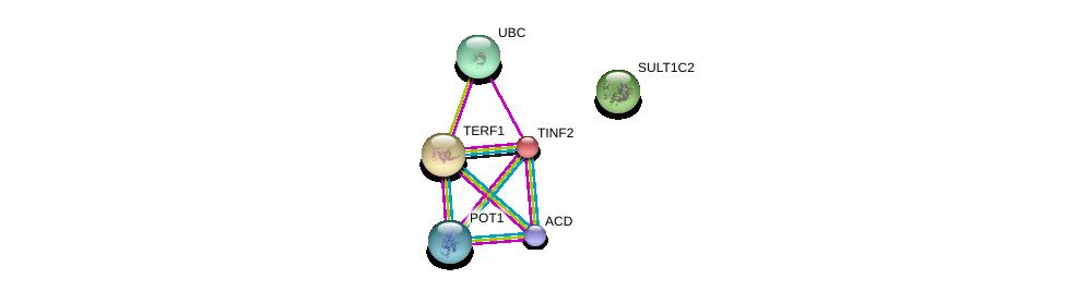 http://string-db.org/version_10/api/image/networkList?limit=0&targetmode=proteins&caller_identity=gene_cards&network_flavor=evidence&identifiers=9606.ENSP00000319622%0d%0a9606.ENSP00000377496%0d%0a9606.ENSP00000267415%0d%0a9606.ENSP00000276603%0d%0a9606.ENSP00000350249%0d%0a9606.ENSP00000344818%0d%0a