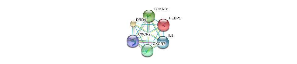 http://string-db.org/version_10/api/image/networkList?limit=0&targetmode=proteins&caller_identity=gene_cards&network_flavor=evidence&identifiers=9606.ENSP00000319635%0d%0a9606.ENSP00000306512%0d%0a9606.ENSP00000272928%0d%0a9606.ENSP00000014930%0d%0a9606.ENSP00000176183%0d%0a9606.ENSP00000216629%0d%0a