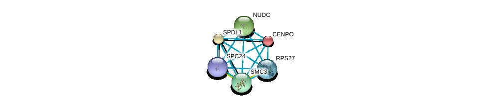 http://string-db.org/version_10/api/image/networkList?limit=0&targetmode=proteins&caller_identity=gene_cards&network_flavor=evidence&identifiers=9606.ENSP00000319664%0d%0a9606.ENSP00000354720%0d%0a9606.ENSP00000265295%0d%0a9606.ENSP00000465075%0d%0a9606.ENSP00000260662%0d%0a9606.ENSP00000357555%0d%0a