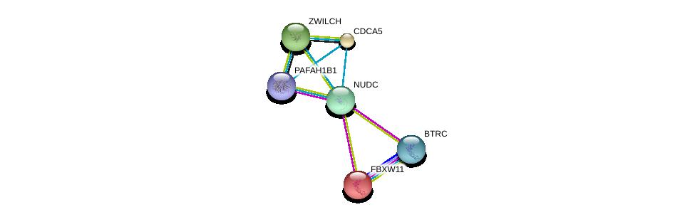 http://string-db.org/version_10/api/image/networkList?limit=0&targetmode=proteins&caller_identity=gene_cards&network_flavor=evidence&identifiers=9606.ENSP00000319664%0d%0a9606.ENSP00000380378%0d%0a9606.ENSP00000359206%0d%0a9606.ENSP00000265094%0d%0a9606.ENSP00000311429%0d%0a9606.ENSP00000275517%0d%0a