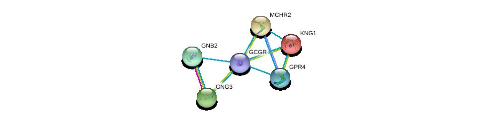 http://string-db.org/version_10/api/image/networkList?limit=0&targetmode=proteins&caller_identity=gene_cards&network_flavor=evidence&identifiers=9606.ENSP00000319744%0d%0a9606.ENSP00000383558%0d%0a9606.ENSP00000265023%0d%0a9606.ENSP00000281806%0d%0a9606.ENSP00000294117%0d%0a9606.ENSP00000305260%0d%0a