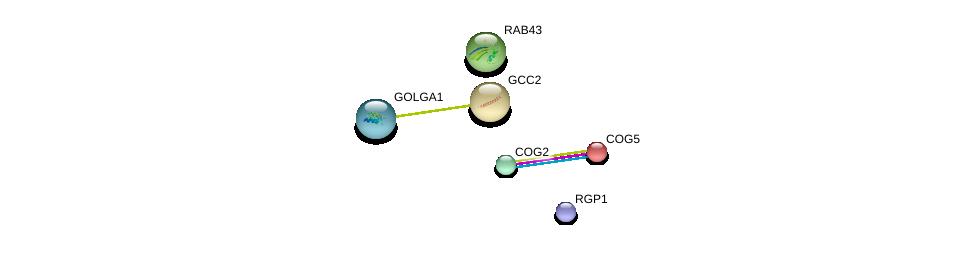 http://string-db.org/version_10/api/image/networkList?limit=0&targetmode=proteins&caller_identity=gene_cards&network_flavor=evidence&identifiers=9606.ENSP00000319781%0d%0a9606.ENSP00000362656%0d%0a9606.ENSP00000297135%0d%0a9606.ENSP00000355629%0d%0a9606.ENSP00000307939%0d%0a9606.ENSP00000367318%0d%0a