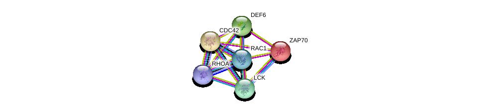 http://string-db.org/version_10/api/image/networkList?limit=0&targetmode=proteins&caller_identity=gene_cards&network_flavor=evidence&identifiers=9606.ENSP00000319831%0d%0a9606.ENSP00000337825%0d%0a9606.ENSP00000264972%0d%0a9606.ENSP00000400175%0d%0a9606.ENSP00000348461%0d%0a9606.ENSP00000314458%0d%0a