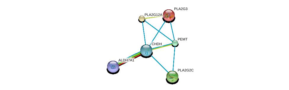http://string-db.org/version_10/api/image/networkList?limit=0&targetmode=proteins&caller_identity=gene_cards&network_flavor=evidence&identifiers=9606.ENSP00000319851%0d%0a9606.ENSP00000387123%0d%0a9606.ENSP00000215885%0d%0a9606.ENSP00000243501%0d%0a9606.ENSP00000247992%0d%0a9606.ENSP00000255389%0d%0a