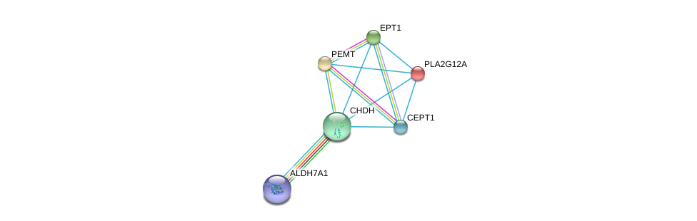 http://string-db.org/version_10/api/image/networkList?limit=0&targetmode=proteins&caller_identity=gene_cards&network_flavor=evidence&identifiers=9606.ENSP00000319851%0d%0a9606.ENSP00000387123%0d%0a9606.ENSP00000349696%0d%0a9606.ENSP00000243501%0d%0a9606.ENSP00000255389%0d%0a9606.ENSP00000260585%0d%0a