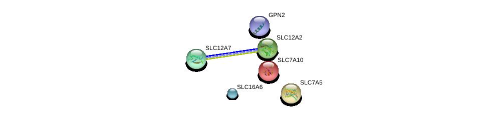 http://string-db.org/version_10/api/image/networkList?limit=0&targetmode=proteins&caller_identity=gene_cards&network_flavor=evidence&identifiers=9606.ENSP00000319991%0d%0a9606.ENSP00000363250%0d%0a9606.ENSP00000253188%0d%0a9606.ENSP00000261622%0d%0a9606.ENSP00000262461%0d%0a9606.ENSP00000264930%0d%0a