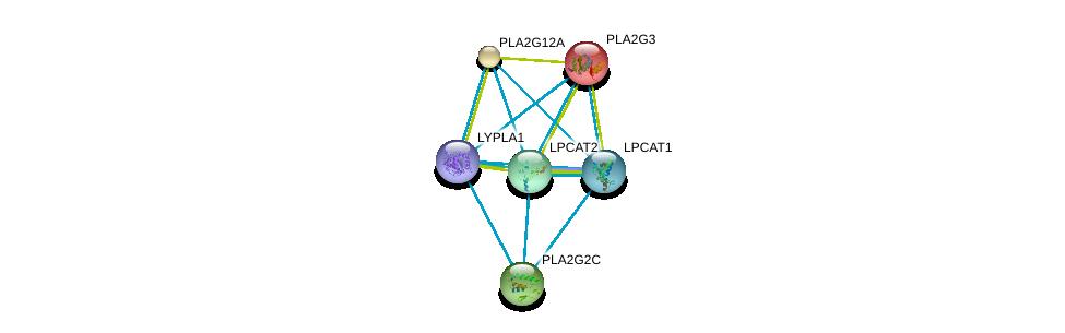 http://string-db.org/version_10/api/image/networkList?limit=0&targetmode=proteins&caller_identity=gene_cards&network_flavor=evidence&identifiers=9606.ENSP00000320043%0d%0a9606.ENSP00000215885%0d%0a9606.ENSP00000243501%0d%0a9606.ENSP00000247992%0d%0a9606.ENSP00000262134%0d%0a9606.ENSP00000283415%0d%0a