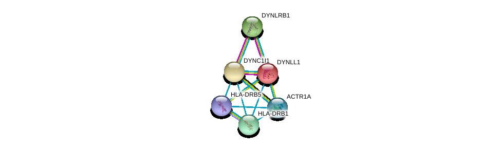 http://string-db.org/version_10/api/image/networkList?limit=0&targetmode=proteins&caller_identity=gene_cards&network_flavor=evidence&identifiers=9606.ENSP00000320130%0d%0a9606.ENSP00000242577%0d%0a9606.ENSP00000349679%0d%0a9606.ENSP00000353099%0d%0a9606.ENSP00000358921%0d%0a9606.ENSP00000364114%0d%0a
