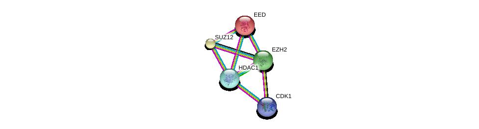 http://string-db.org/version_10/api/image/networkList?limit=0&targetmode=proteins&caller_identity=gene_cards&network_flavor=evidence&identifiers=9606.ENSP00000320147%0d%0a9606.ENSP00000263360%0d%0a9606.ENSP00000263360%0d%0a9606.ENSP00000316578%0d%0a9606.ENSP00000378699%0d%0a9606.ENSP00000362649%0d%0a