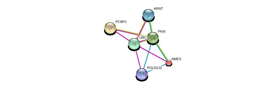 http://string-db.org/version_10/api/image/networkList?limit=0&targetmode=proteins&caller_identity=gene_cards&network_flavor=evidence&identifiers=9606.ENSP00000320171%0d%0a9606.ENSP00000344818%0d%0a9606.ENSP00000305556%0d%0a9606.ENSP00000351407%0d%0a9606.ENSP00000418603%0d%0a9606.ENSP00000219302%0d%0a