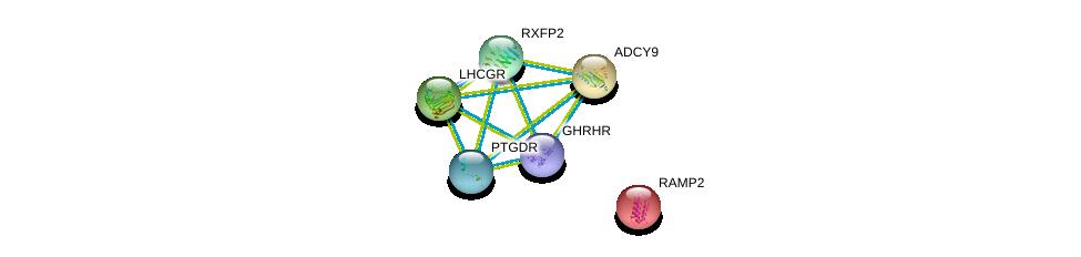 http://string-db.org/version_10/api/image/networkList?limit=0&targetmode=proteins&caller_identity=gene_cards&network_flavor=evidence&identifiers=9606.ENSP00000320180%0d%0a9606.ENSP00000294016%0d%0a9606.ENSP00000298386%0d%0a9606.ENSP00000294954%0d%0a9606.ENSP00000253796%0d%0a9606.ENSP00000303424%0d%0a