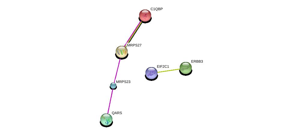 http://string-db.org/version_10/api/image/networkList?limit=0&targetmode=proteins&caller_identity=gene_cards&network_flavor=evidence&identifiers=9606.ENSP00000320184%0d%0a9606.ENSP00000261413%0d%0a9606.ENSP00000307567%0d%0a9606.ENSP00000225698%0d%0a9606.ENSP00000267101%0d%0a9606.ENSP00000362300%0d%0a