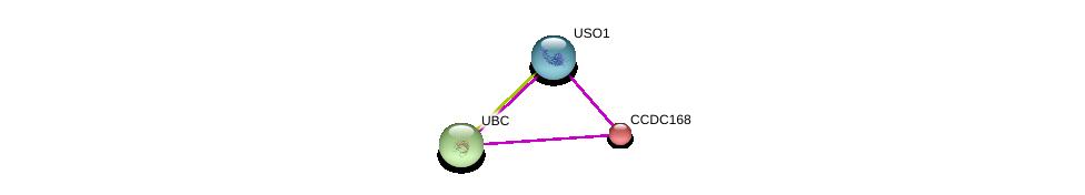 http://string-db.org/version_10/api/image/networkList?limit=0&targetmode=proteins&caller_identity=gene_cards&network_flavor=evidence&identifiers=9606.ENSP00000320232%0d%0a9606.ENSP00000440586%0d%0a9606.ENSP00000344818%0d%0a