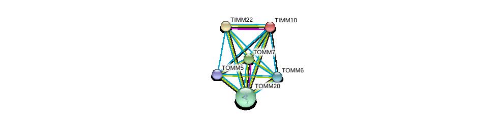 http://string-db.org/version_10/api/image/networkList?limit=0&targetmode=proteins&caller_identity=gene_cards&network_flavor=evidence&identifiers=9606.ENSP00000320236%0d%0a9606.ENSP00000257245%0d%0a9606.ENSP00000355566%0d%0a9606.ENSP00000381856%0d%0a9606.ENSP00000438204%0d%0a9606.ENSP00000351214%0d%0a