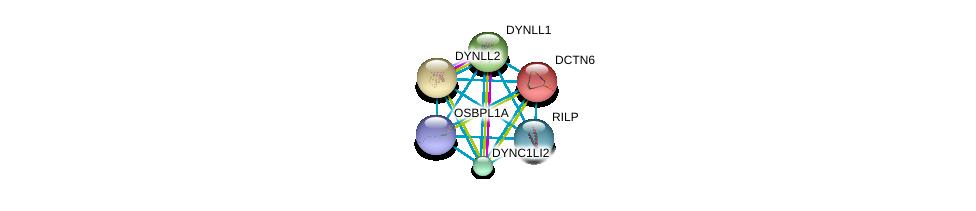http://string-db.org/version_10/api/image/networkList?limit=0&targetmode=proteins&caller_identity=gene_cards&network_flavor=evidence&identifiers=9606.ENSP00000320291%0d%0a9606.ENSP00000301336%0d%0a9606.ENSP00000221114%0d%0a9606.ENSP00000240343%0d%0a9606.ENSP00000242577%0d%0a9606.ENSP00000258198%0d%0a