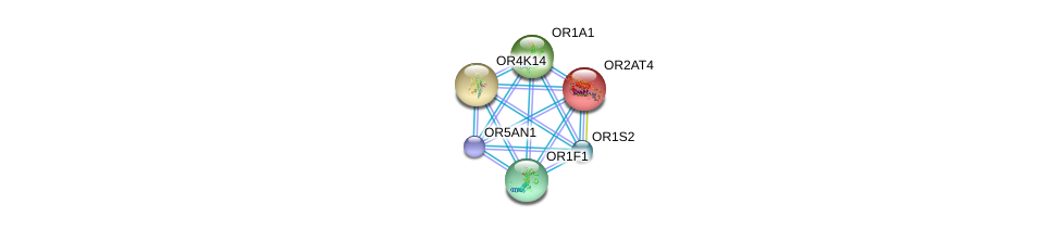 http://string-db.org/version_10/api/image/networkList?limit=0&targetmode=proteins&caller_identity=gene_cards&network_flavor=evidence&identifiers=9606.ENSP00000320302%0d%0a9606.ENSP00000305011%0d%0a9606.ENSP00000304846%0d%0a9606.ENSP00000305207%0d%0a9606.ENSP00000305424%0d%0a9606.ENSP00000305469%0d%0a