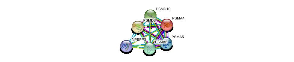 http://string-db.org/version_10/api/image/networkList?limit=0&targetmode=proteins&caller_identity=gene_cards&network_flavor=evidence&identifiers=9606.ENSP00000320324%0d%0a9606.ENSP00000215071%0d%0a9606.ENSP00000217958%0d%0a9606.ENSP00000261479%0d%0a9606.ENSP00000271308%0d%0a9606.ENSP00000044462%0d%0a