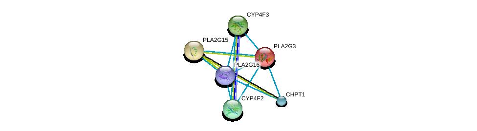 http://string-db.org/version_10/api/image/networkList?limit=0&targetmode=proteins&caller_identity=gene_cards&network_flavor=evidence&identifiers=9606.ENSP00000320337%0d%0a9606.ENSP00000215885%0d%0a9606.ENSP00000219345%0d%0a9606.ENSP00000221307%0d%0a9606.ENSP00000221700%0d%0a9606.ENSP00000229266%0d%0a
