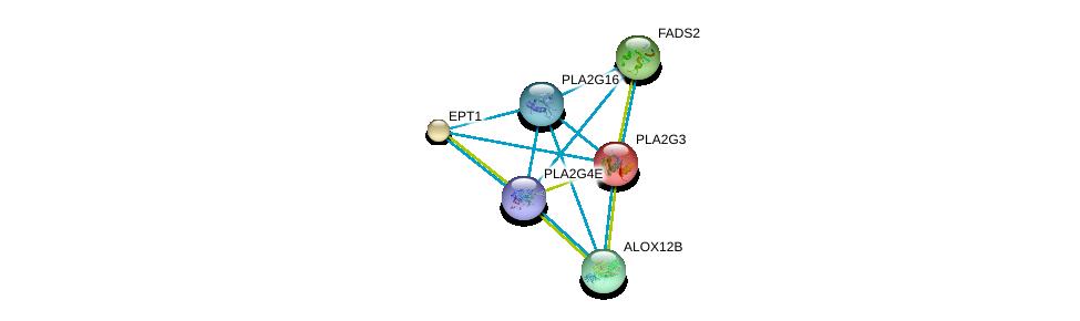http://string-db.org/version_10/api/image/networkList?limit=0&targetmode=proteins&caller_identity=gene_cards&network_flavor=evidence&identifiers=9606.ENSP00000320337%0d%0a9606.ENSP00000215885%0d%0a9606.ENSP00000315167%0d%0a9606.ENSP00000382434%0d%0a9606.ENSP00000260585%0d%0a9606.ENSP00000278840%0d%0a