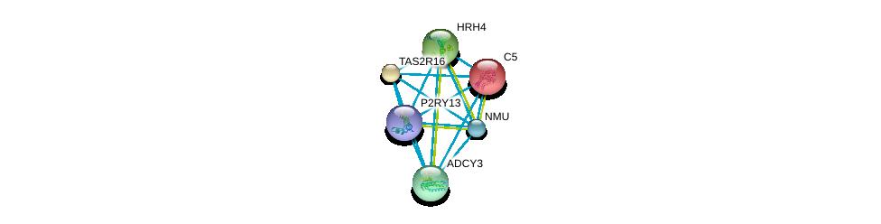 http://string-db.org/version_10/api/image/networkList?limit=0&targetmode=proteins&caller_identity=gene_cards&network_flavor=evidence&identifiers=9606.ENSP00000320376%0d%0a9606.ENSP00000223642%0d%0a9606.ENSP00000249284%0d%0a9606.ENSP00000256906%0d%0a9606.ENSP00000260600%0d%0a9606.ENSP00000264218%0d%0a