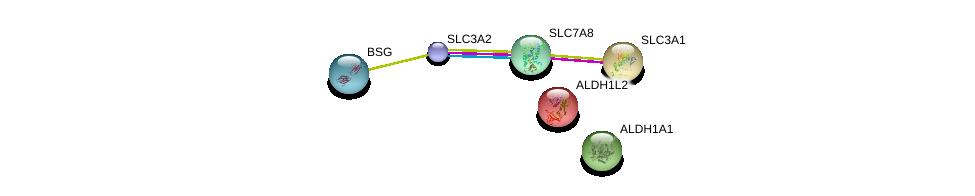 http://string-db.org/version_10/api/image/networkList?limit=0&targetmode=proteins&caller_identity=gene_cards&network_flavor=evidence&identifiers=9606.ENSP00000320378%0d%0a9606.ENSP00000333769%0d%0a9606.ENSP00000260649%0d%0a9606.ENSP00000367123%0d%0a9606.ENSP00000297785%0d%0a9606.ENSP00000258494%0d%0a