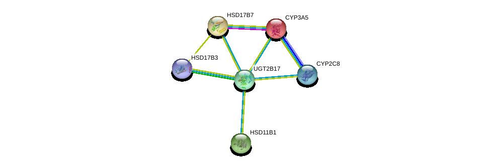 http://string-db.org/version_10/api/image/networkList?limit=0&targetmode=proteins&caller_identity=gene_cards&network_flavor=evidence&identifiers=9606.ENSP00000320401%0d%0a9606.ENSP00000254521%0d%0a9606.ENSP00000364412%0d%0a9606.ENSP00000360317%0d%0a9606.ENSP00000261465%0d%0a9606.ENSP00000222982%0d%0a