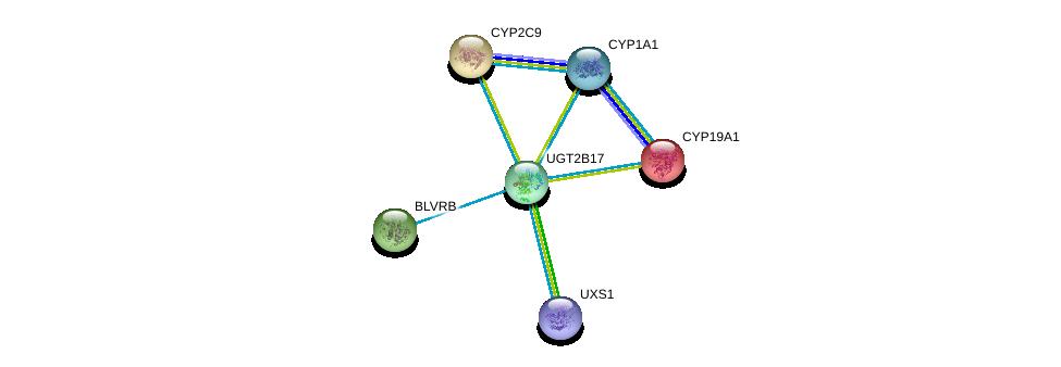 http://string-db.org/version_10/api/image/networkList?limit=0&targetmode=proteins&caller_identity=gene_cards&network_flavor=evidence&identifiers=9606.ENSP00000320401%0d%0a9606.ENSP00000260433%0d%0a9606.ENSP00000387019%0d%0a9606.ENSP00000260682%0d%0a9606.ENSP00000263368%0d%0a9606.ENSP00000369050%0d%0a