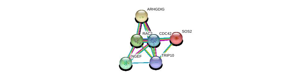 http://string-db.org/version_10/api/image/networkList?limit=0&targetmode=proteins&caller_identity=gene_cards&network_flavor=evidence&identifiers=9606.ENSP00000320493%0d%0a9606.ENSP00000314458%0d%0a9606.ENSP00000216373%0d%0a9606.ENSP00000219409%0d%0a9606.ENSP00000249071%0d%0a9606.ENSP00000264051%0d%0a