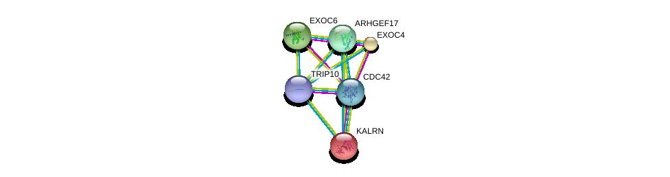 http://string-db.org/version_10/api/image/networkList?limit=0&targetmode=proteins&caller_identity=gene_cards&network_flavor=evidence&identifiers=9606.ENSP00000320493%0d%0a9606.ENSP00000314458%0d%0a9606.ENSP00000240874%0d%0a9606.ENSP00000253861%0d%0a9606.ENSP00000260762%0d%0a9606.ENSP00000263674%0d%0a