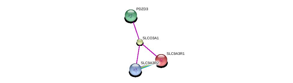 http://string-db.org/version_10/api/image/networkList?limit=0&targetmode=proteins&caller_identity=gene_cards&network_flavor=evidence&identifiers=9606.ENSP00000320634%0d%0a9606.ENSP00000408005%0d%0a9606.ENSP00000347742%0d%0a9606.ENSP00000262613%0d%0a
