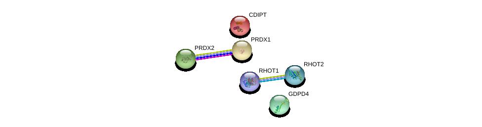 http://string-db.org/version_10/api/image/networkList?limit=0&targetmode=proteins&caller_identity=gene_cards&network_flavor=evidence&identifiers=9606.ENSP00000320815%0d%0a9606.ENSP00000219789%0d%0a9606.ENSP00000321971%0d%0a9606.ENSP00000351132%0d%0a9606.ENSP00000262746%0d%0a9606.ENSP00000301522%0d%0a