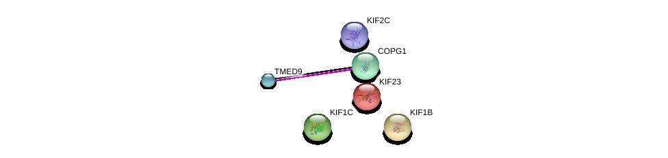 http://string-db.org/version_10/api/image/networkList?limit=0&targetmode=proteins&caller_identity=gene_cards&network_flavor=evidence&identifiers=9606.ENSP00000320821%0d%0a9606.ENSP00000330945%0d%0a9606.ENSP00000263934%0d%0a9606.ENSP00000325002%0d%0a9606.ENSP00000361298%0d%0a9606.ENSP00000260363%0d%0a